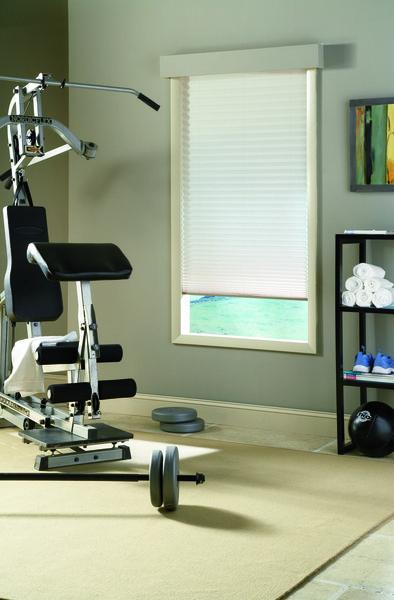 pleated shades gym